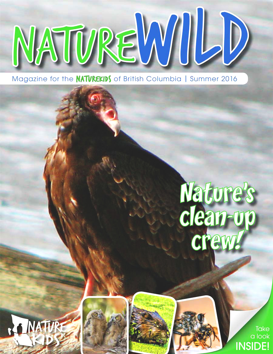 NatureWILDvolume17_issue2.indd