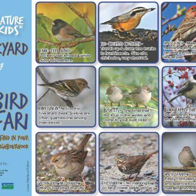 NatureKids BC Backyard Bird Safari LM_Page_1