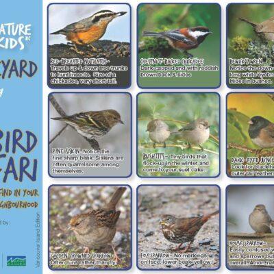 NatureKids BC Backyard Bird Safari VI_Page_1