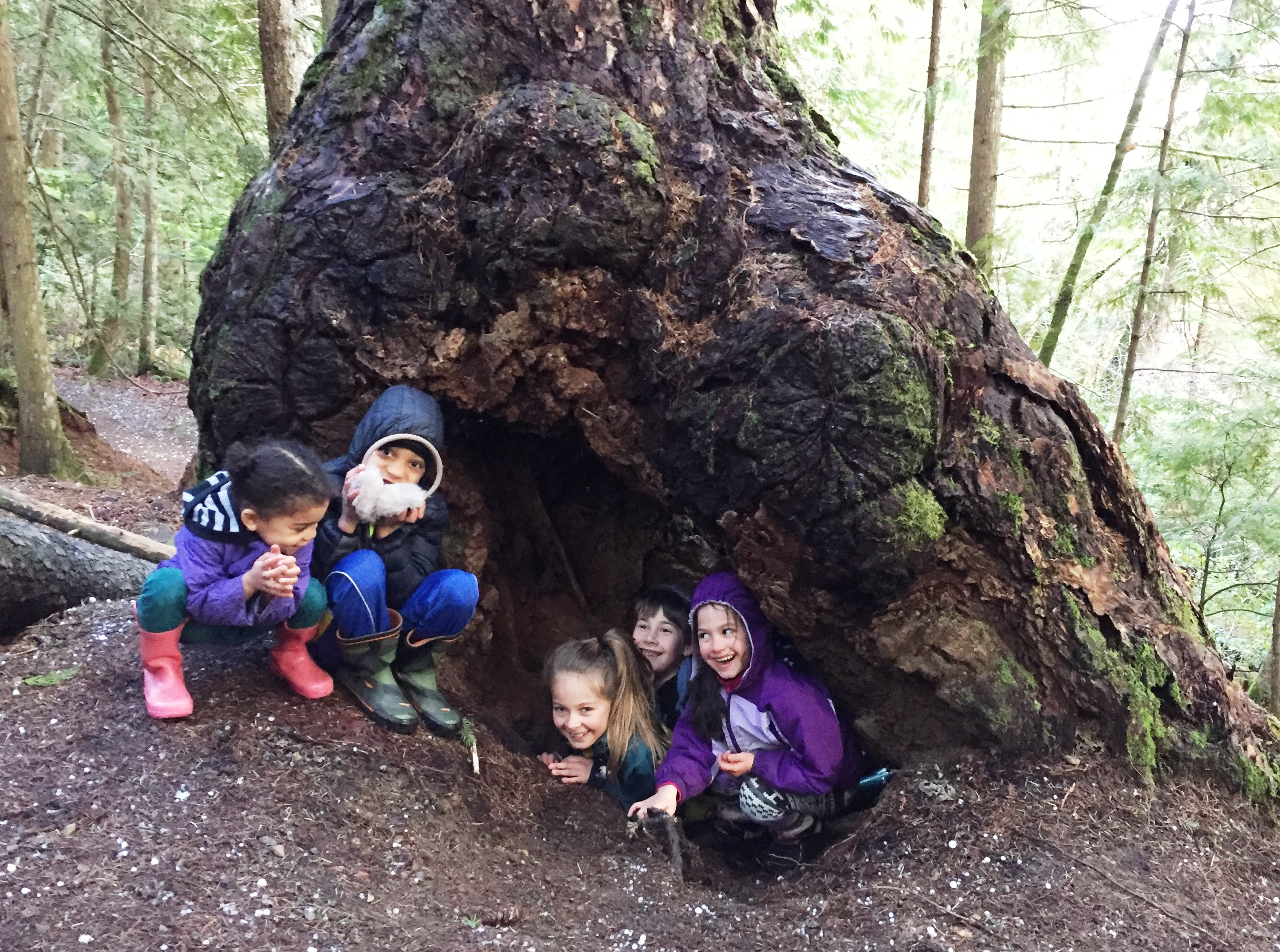 Why Kids Need To Spend Time In Nature >> Why Kids Need To Spend Time Exploring The Natural World Naturekidsbc