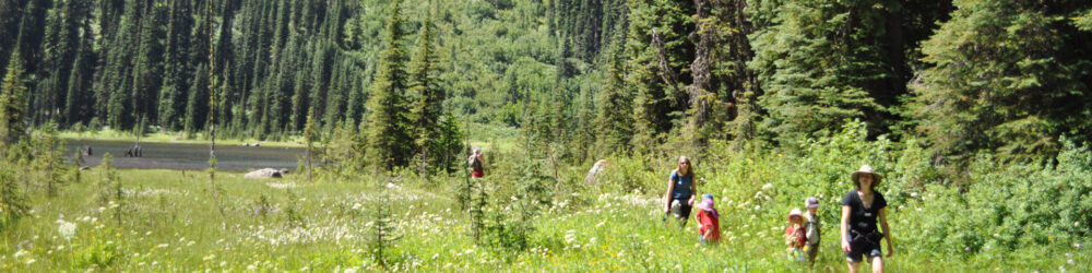 NatureKids BC announces new $1500 Scholarship for young adults!